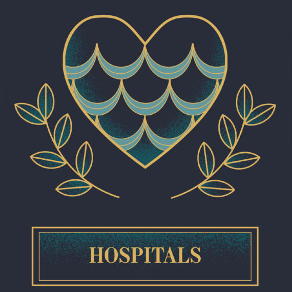 A close up of the design used for the hospitals benefitted section of the booklet