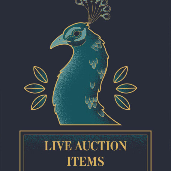 Close up of the live auction items title page. A peacock was used because its feathers were often used in the extravagant masquerade gowns and masks.
