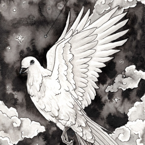 Columba constellation ink wash painting with dove and night sky